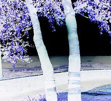 Birch by Gu88dek