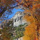 Goshute Peak by Arla M. Ruggles