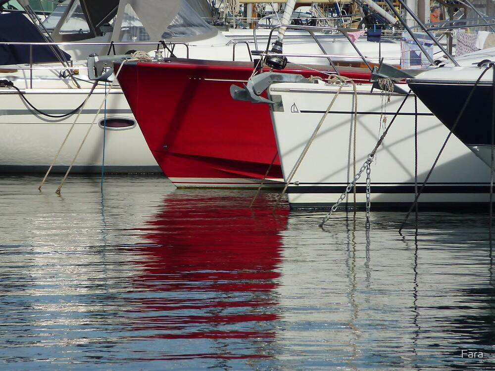 Boats in the marina of St-Jean Cap Ferrat by Fara