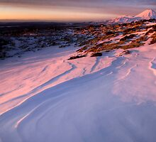 Mt Ngauruhoe still not in Cloud  by Michael Treloar
