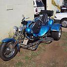 Panther Sportcat Trike - RGM19 by Joe Hupp