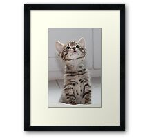 What's up there? Framed Print