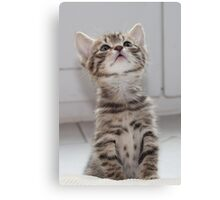 What's up there? Canvas Print