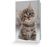 Please. Please. Tell me I'm cute. Greeting Card
