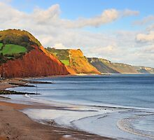Triassic Cliffs, Sidmouth, Devon, UK by bevanimage