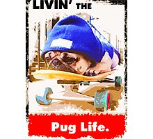 Livin' the Pug Life Photographic Print