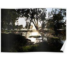 Morning Dew - Albury NSW Poster
