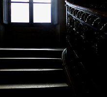 A ghost's dream by su2anne