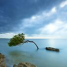 Be Who You Are - Deception Bay Qld Australia by Beth  Wode