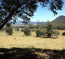 Victorian High Country by Emmy Silvius