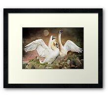 Who Is The Fairest Of Them All? Framed Print
