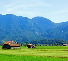 countryside and mountain by Daidalos