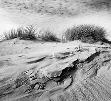 Dunescape 01 - St Annes on Sea Dunes, Fylde, Lancs by ExclusivelyMono