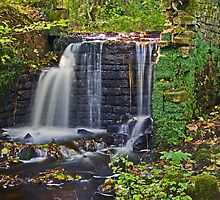 Rivelin Valley cascade. by naranzaria