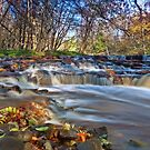 Autumn in Teesdale by mountainsandsky
