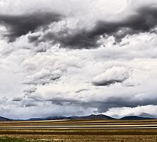 High Plains Drifters by Gregory J Summers