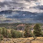 Rocky Mountain Cloudscape by Gregory J Summers