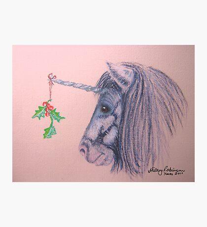 A Shetland Unicorn Does Christmas Photographic Print