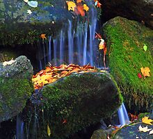 AUTUMN WATERS by Chuck Wickham