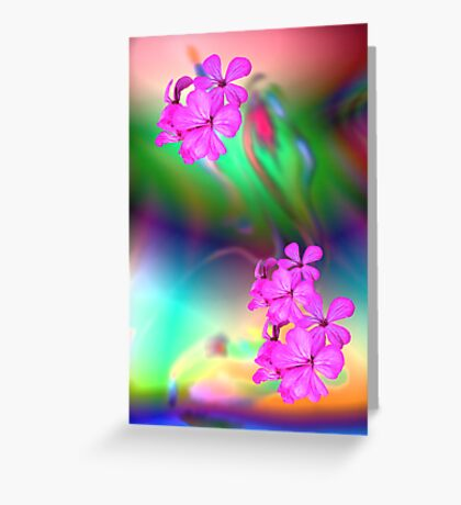 Tranquil Moments Greeting Card