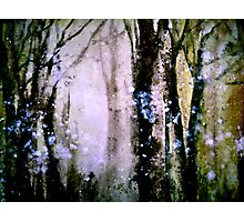 Saturday in the Park.. Photographic Print