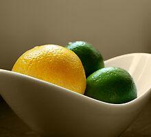 Lemon & Lime by Julesrules