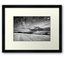 A Delicate Sky Plays with the Evening Harvest Sun BW Framed Print