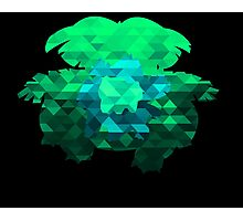 Bulbasaur - Ivysaur - Venusaur - Polygon Photographic Print