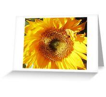 Sunny Flower Greeting Card