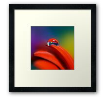 Colour Of Life XXI [Print & iPad Case] Framed Print