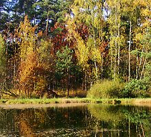 Autumn mirror. by alaskaman53