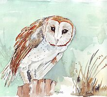 Barn Owl/Nonnetjie-Uil by Maree Clarkson
