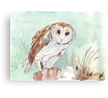 Barn Owl/Nonnetjie-Uil Canvas Print