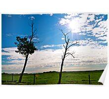 Alberta Landscape, Canada Poster