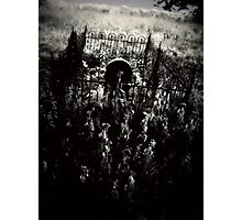 dead things Photographic Print