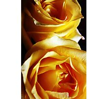 Touch of Yellow Photographic Print