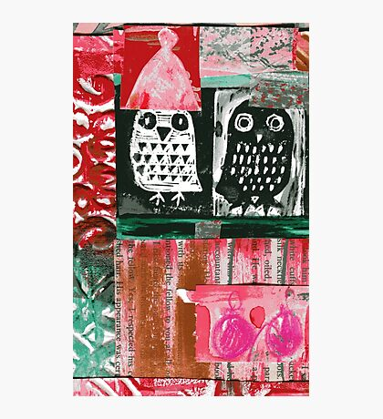 Owls 4 Photographic Print