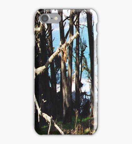 Monterey Brush... iPhone Case/Skin