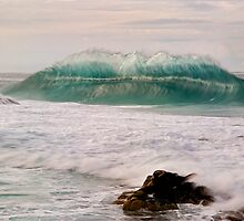 WildgreenWave by Kip Nunn