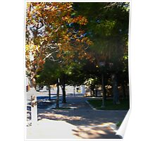 Autumn Leaves & Fall Colors Poster