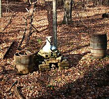 Whisky Still by virginian
