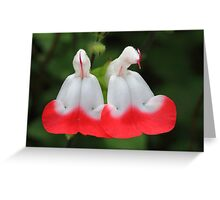 """Garden Bells"" Greeting Card"