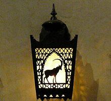 Disneyworld - Animal Kingdom - a light on the wall by logonfire