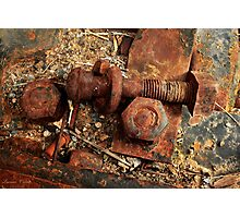 Loose Nuts Photographic Print