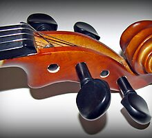 Play in Tune - Violin Vignette by BlueMoonRose