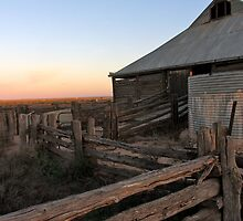 Old Shearing Shed, Mungo Lake National Park, NSW by Collymack