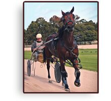 Trotting at Swan Hill Canvas Print