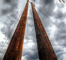 Crossed Lines by Bob Larson