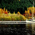 """""""AUTUMN ON LOCH OICH"""" by snapitnc"""