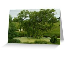 Waterhole Greeting Card